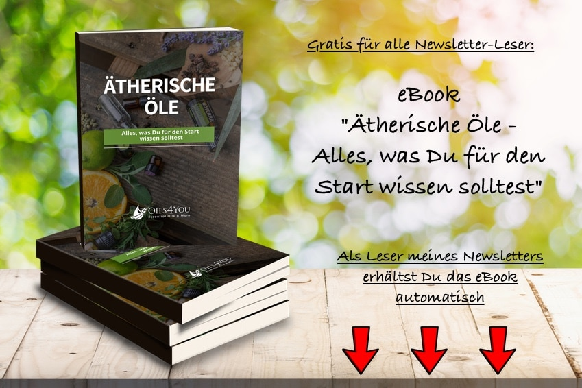 Angebot eBook
